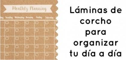 Lamina de corcho de 60x45 cm con mapamundi negro - Laminas de corcho ...